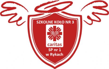 Logo PSP nr 1 w Rykach